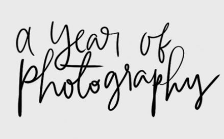 A Year of Photography